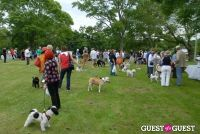 Paws Across The Hamptons Dog Walk To Benefit Southampton Hospital & Animal Shelter Foundation #136