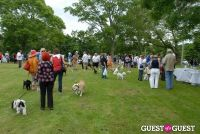 Paws Across The Hamptons Dog Walk To Benefit Southampton Hospital & Animal Shelter Foundation #137