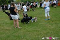 Paws Across The Hamptons Dog Walk To Benefit Southampton Hospital & Animal Shelter Foundation #152