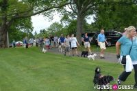 Paws Across The Hamptons Dog Walk To Benefit Southampton Hospital & Animal Shelter Foundation #175