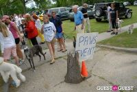 Paws Across The Hamptons Dog Walk To Benefit Southampton Hospital & Animal Shelter Foundation #180