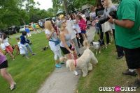 Paws Across The Hamptons Dog Walk To Benefit Southampton Hospital & Animal Shelter Foundation #196
