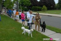 Paws Across The Hamptons Dog Walk To Benefit Southampton Hospital & Animal Shelter Foundation #206
