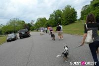 Paws Across The Hamptons Dog Walk To Benefit Southampton Hospital & Animal Shelter Foundation #220