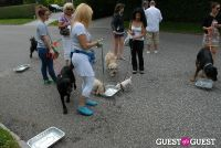 Paws Across The Hamptons Dog Walk To Benefit Southampton Hospital & Animal Shelter Foundation #222