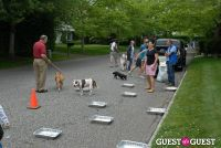 Paws Across The Hamptons Dog Walk To Benefit Southampton Hospital & Animal Shelter Foundation #224