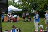 Paws Across The Hamptons Dog Walk To Benefit Southampton Hospital & Animal Shelter Foundation #261