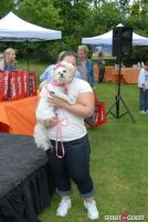 Paws Across The Hamptons Dog Walk To Benefit Southampton Hospital & Animal Shelter Foundation #308