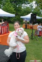 Paws Across The Hamptons Dog Walk To Benefit Southampton Hospital & Animal Shelter Foundation #313
