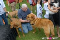 Paws Across The Hamptons Dog Walk To Benefit Southampton Hospital & Animal Shelter Foundation #314