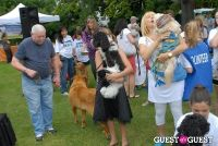 Paws Across The Hamptons Dog Walk To Benefit Southampton Hospital & Animal Shelter Foundation #316