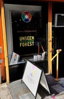 Unseen Forest - New Paintings by Chen Ping opening #10