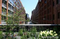 Target High Line Street Festival #28
