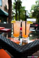Mad Rose Tavern Happy Hour #17