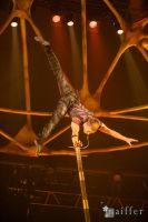 Cirque Du Soleil: TOTEM #4