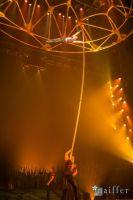 Cirque Du Soleil: TOTEM #7