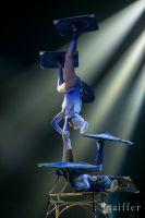 Cirque Du Soleil: TOTEM #14