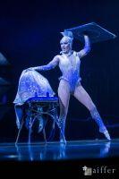 Cirque Du Soleil: TOTEM #18