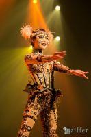 Cirque Du Soleil: TOTEM #30