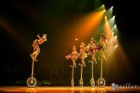 Cirque Du Soleil: TOTEM #33