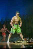 Cirque Du Soleil: TOTEM #48