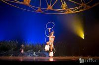 Cirque Du Soleil: TOTEM #54