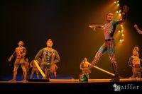 Cirque Du Soleil: TOTEM #94