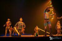 Cirque Du Soleil: TOTEM #95