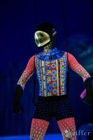 Cirque Du Soleil: TOTEM #100