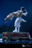 Cirque Du Soleil: TOTEM #122