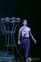 Cirque Du Soleil: TOTEM #149