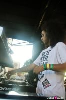 Mad Decent Block Party 2012 #48