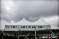 28th Annual Harriman Cup Polo Match #371