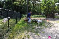Jean Shafiroff and Dog Trainer Bill Grimmer Visit Southampton Animal Shelter #27