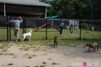 Jean Shafiroff and Dog Trainer Bill Grimmer Visit Southampton Animal Shelter #33