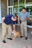 Jean Shafiroff and Dog Trainer Bill Grimmer Visit Southampton Animal Shelter #77