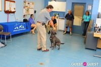 Jean Shafiroff and Dog Trainer Bill Grimmer Visit Southampton Animal Shelter #158