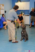 Jean Shafiroff and Dog Trainer Bill Grimmer Visit Southampton Animal Shelter #159