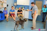 Jean Shafiroff and Dog Trainer Bill Grimmer Visit Southampton Animal Shelter #164