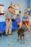 Jean Shafiroff and Dog Trainer Bill Grimmer Visit Southampton Animal Shelter #170