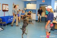 Jean Shafiroff and Dog Trainer Bill Grimmer Visit Southampton Animal Shelter #171