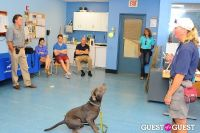 Jean Shafiroff and Dog Trainer Bill Grimmer Visit Southampton Animal Shelter #172