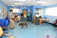 Jean Shafiroff and Dog Trainer Bill Grimmer Visit Southampton Animal Shelter #174
