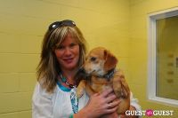 Jean Shafiroff and Dog Trainer Bill Grimmer Visit Southampton Animal Shelter #202