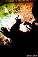 NOCTURNAL WONDERLAND: ARMED & DANGEROUS #16