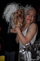 Animal Fair Magazine's 10th Annual Paws For Style #91
