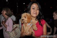 Animal Fair Magazine's 10th Annual Paws For Style #112