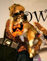 The Amanda Foundation's Bow Wow Beverly Hills #92