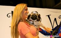 The Amanda Foundation's Bow Wow Beverly Hills #93