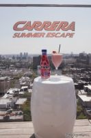 Carrera Summer Escape #42